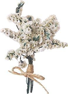 Swide Ramo De Flores Secas Paquetes De Flores Hechos A Mano Accesorios De Fotografía 512 Pulgadas De Largo Decoración para...
