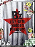 B'z LIVE-GYM Hidden Pleasure ~Typhoon No.20~ [DVD] image