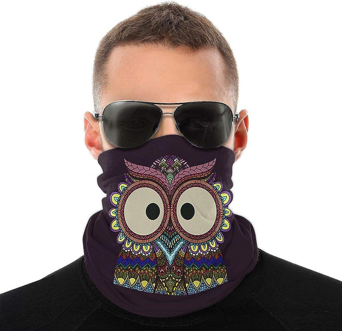 KiuLoam Tribal Ethnic Paisley Owl Bird Seamless Face Mask Bandanas Neck Gaiter for Men and Women, Multifunction Headband Scarf for Dust, Outdoors, Sports