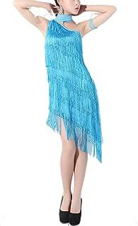 Women's One Shoulder Latin Salsa Rumba Dance Dance Costume Dress Outfit