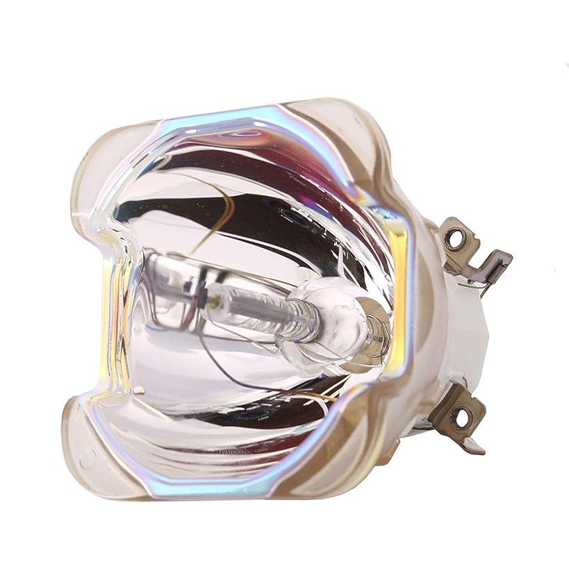 文献完全に名誉あるLutema OEM 交換用ランプ ハウジング/電球付き Barco R9832774用 Economy