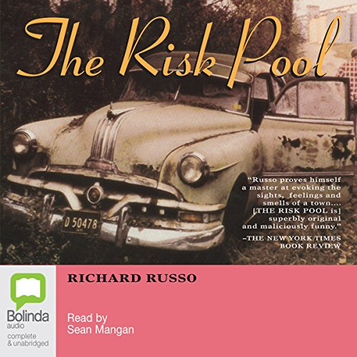 The Risk Pool audiobook cover art