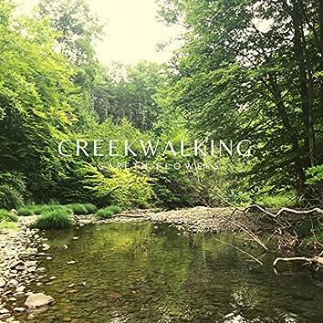 Creekwalking