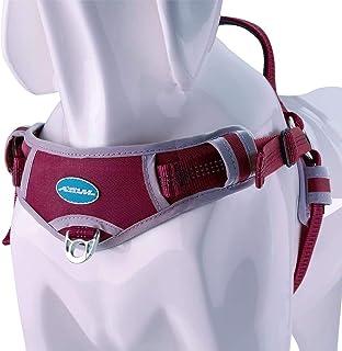 ThinkPet No Pull Harness Harnais de Sport Respirant - Anti-Fuite/Ajustement Rapide Réfléchissant Gilet de sécurité pour Ch...
