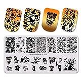 Estampado de uñas de acero inoxidable para esmalte de uñas, concha de arte de uñas - plantilla de imagen de fruta - Pack: 19