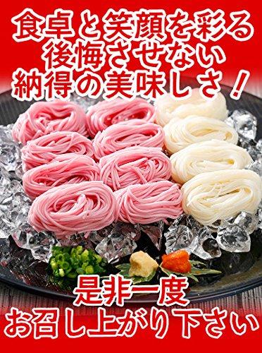 ふみこ農園そうめん紀州梅そうめん500g(250g×2袋)プチギフト手延べ素麺