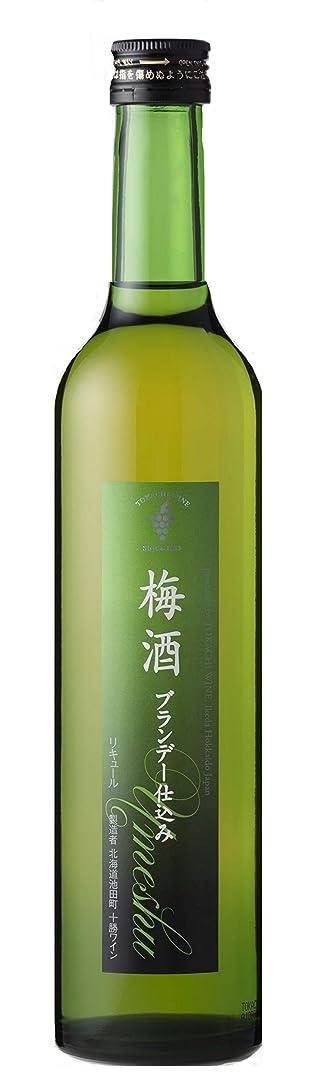 換気するブラザー神の十勝ワイン 梅酒ブランデー仕込み [ 500ml ]