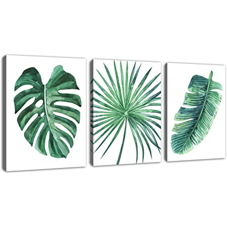 Plant Art Print Pack Swiss Cheese plant Jungle Illustration