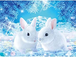 DIY 5D Diamond Painting Kit,Painting Cross Stitch Partial Drill Crystal Rhinestone Embroidery Pictures Arts Craft Canvas for Home Wall Decoration Gift,Cute Little White Rabbit