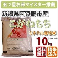 戸塚正商店 新米 新潟県阿賀野市産ミネラル栽培米 もち米「こがねもち」1kg×10