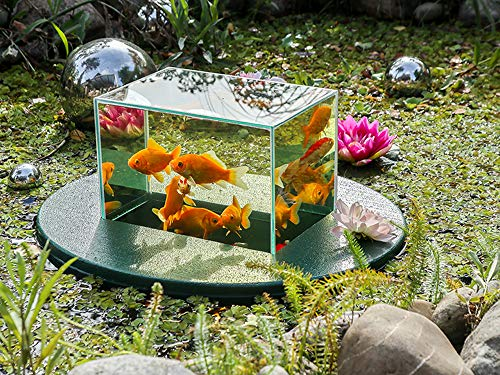 Flying-Aquarium-Oval©