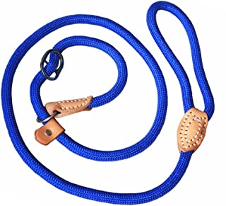 dog whisperer collar