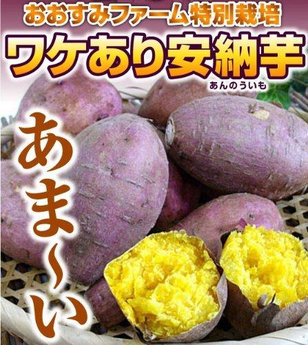 おおすみ食品株式会社 安納芋ペースト業務用5kg