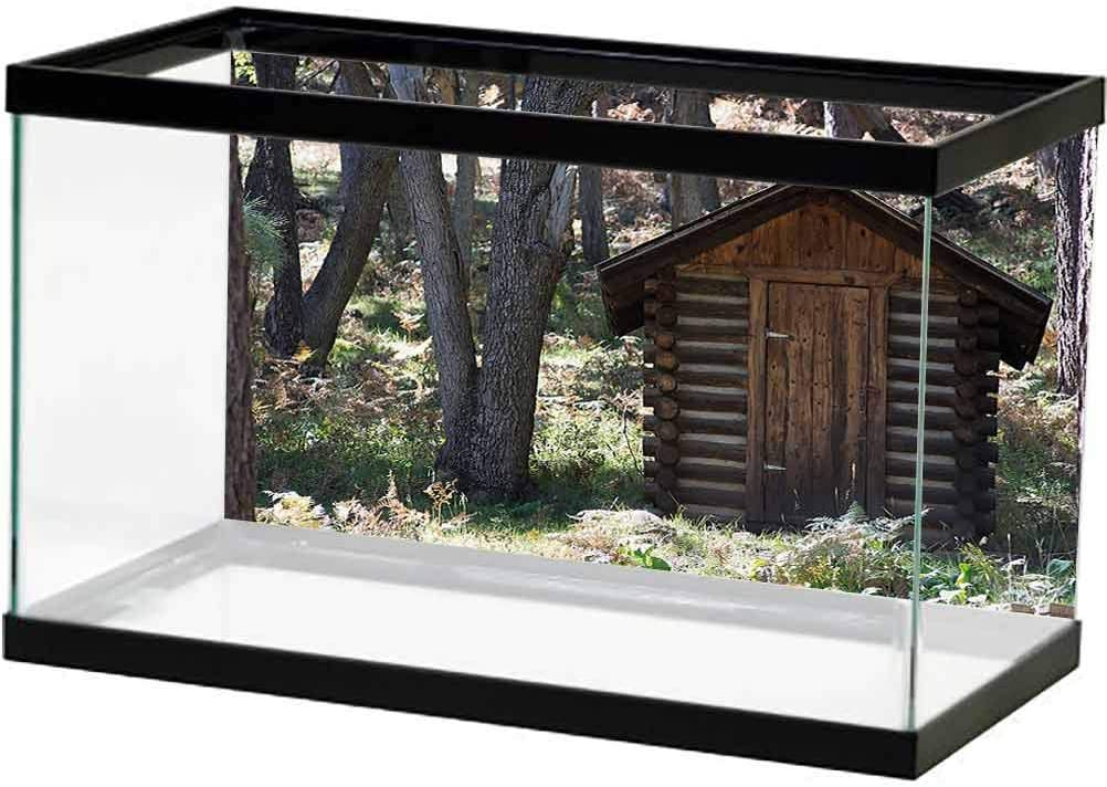 Outhouse Underwater Now on sale Backdrop Image Ranking TOP17 Decor Farm Life Cotta Vintage