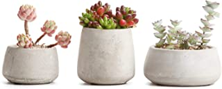 T4U Cement Succulent Pot Set of 3, Grey Small Concrete Cactus Plant Planter Indoor Herb Aloe Window Box Container Holder for Home and Office Decor Birthday Wedding