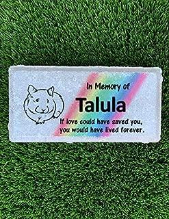 Guinea Pig Memorial Stone - Rainbow Bridge Memorial Stone- Pet Burial Marker