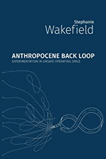 Anthropocene Back Loop: Experimentation in Unsafe Operating Space (Critical Climate Chaos: Irreversibility)
