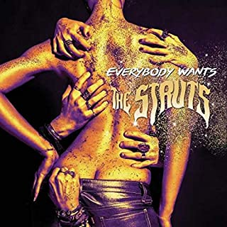 the struts everybody wants songs