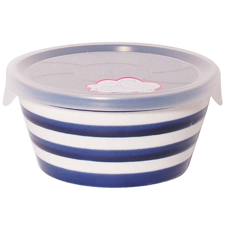 助けになるスプリット混合したみのる陶器 小鉢 プランタリー ボーダー 撥水ブルー S