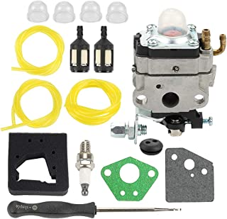 Coolwind Carburetor +Air Filter + Adjustment Tool + Fuel Filter/Line Tune Up Kit for Honda 4 Cycle Engine GX31 GX22 FG100 16100-ZM5-803