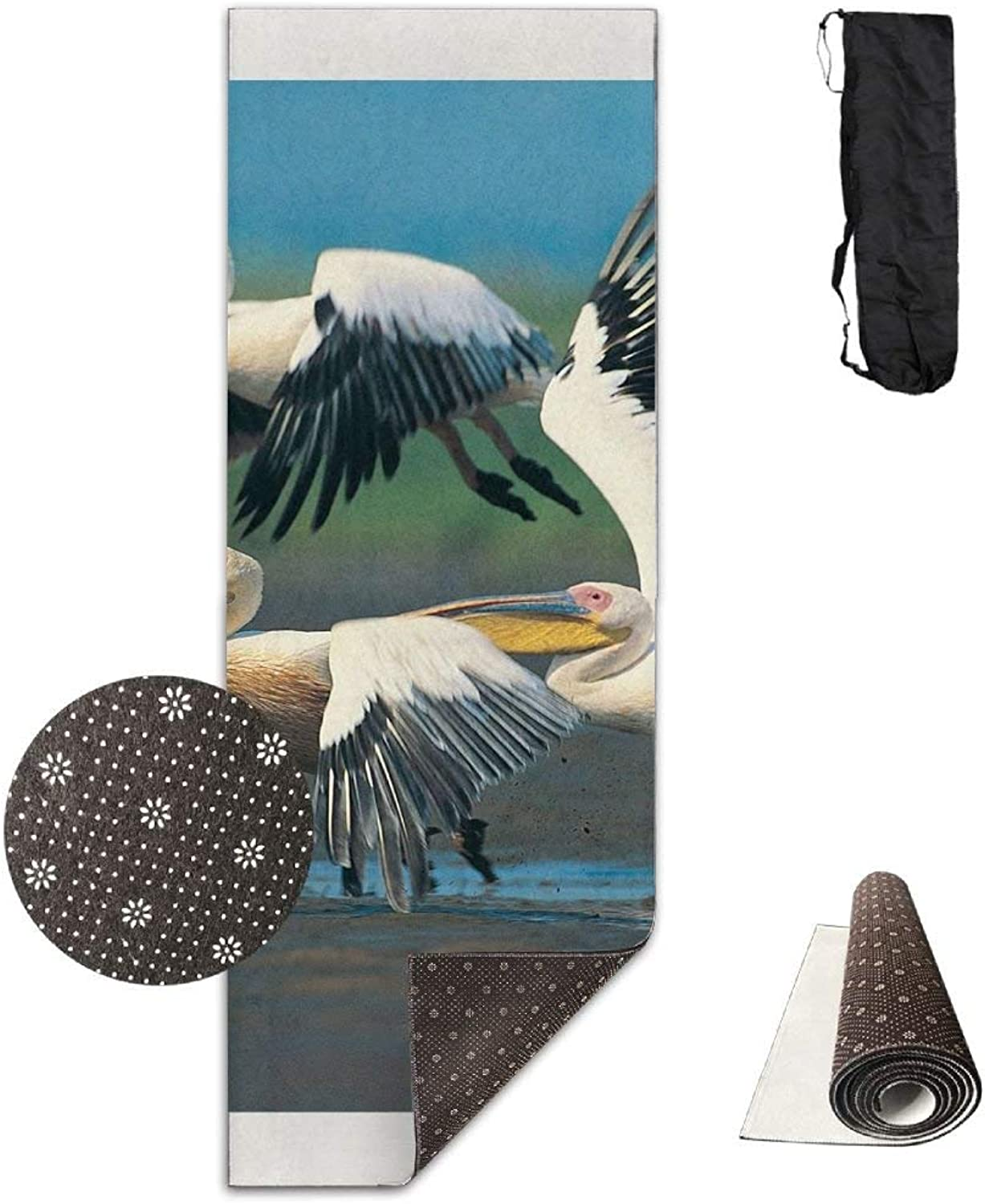 Cool Ciconiiformes Birds Painting Deluxe Yoga Mat Aerobic Exercise Pilates