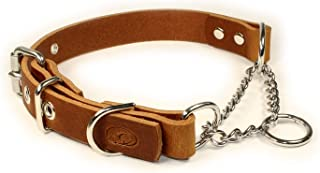 sleepy pup Adjustable Leather Martingale Chain, Limited Slip, Half-Check Chain, Training Dog Collar - Made in Virginia (M/...