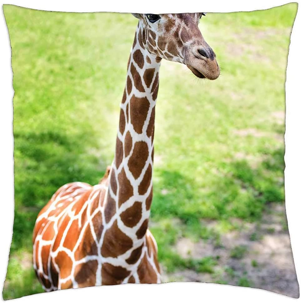 LESGAULEST Throw At the price Pillow Cover 24x24 Giraff - Time sale Giraffe inch Baby