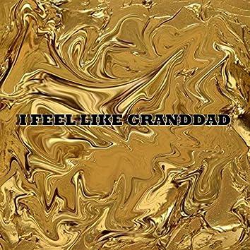 I Feel Like Granddad (feat. Camyo)