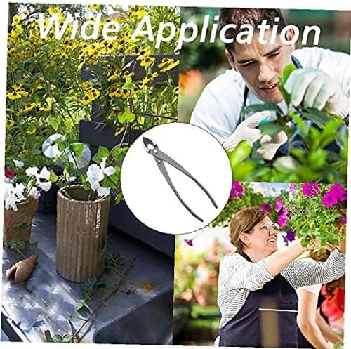 8inch Outils Bonsai Jardinage Sécateur Floral Fruit Branch Cutter Professionnel Bonsai Gardening Jin Pinces Traight Bord Cutter Direction Usine