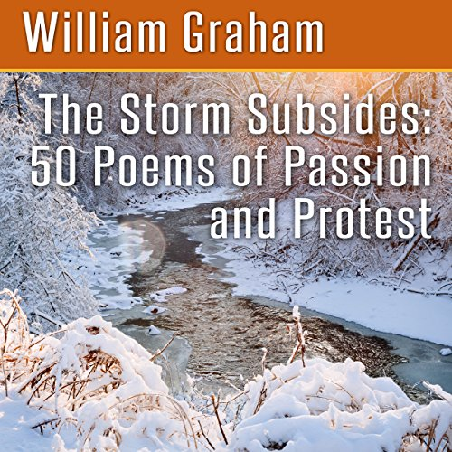 The Storm Subsides audiobook cover art