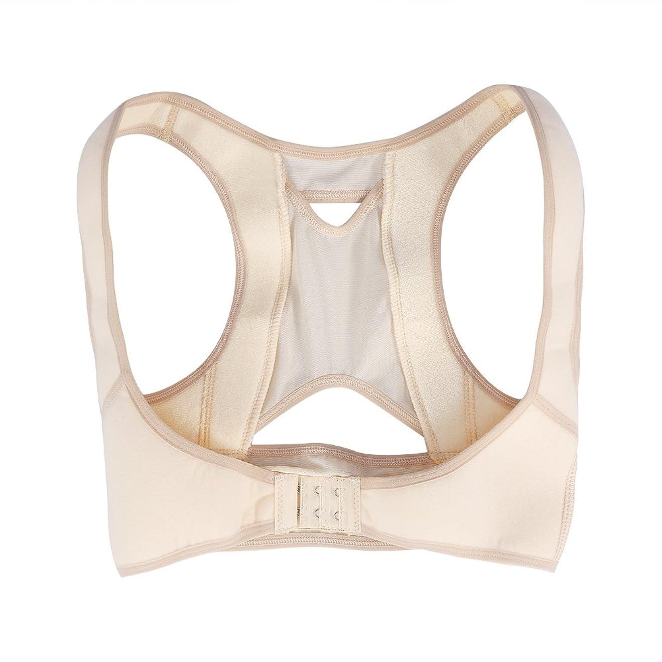 開発する水っぽい骨姿勢矯正ベルト、後矯正器、4サイズ体位矯正バンドバックショルダー、腰椎矯正器補正ショルダー姿勢矯正(L)