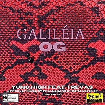 Galiléia Og