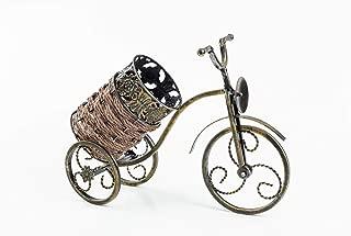 Asian Home Bicycle Wine Bottle Holder Desktop Bike Wine Rack Freestanding Countertop Bottle Holder for Wine Storage, Metal, Gold Colored