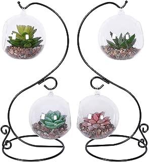 Best glass plant terrariums for sale Reviews