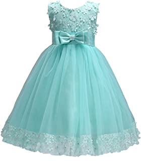 Weileenice 1-14 Years Big/Little Girl Flower Lace A-line Party Dresses
