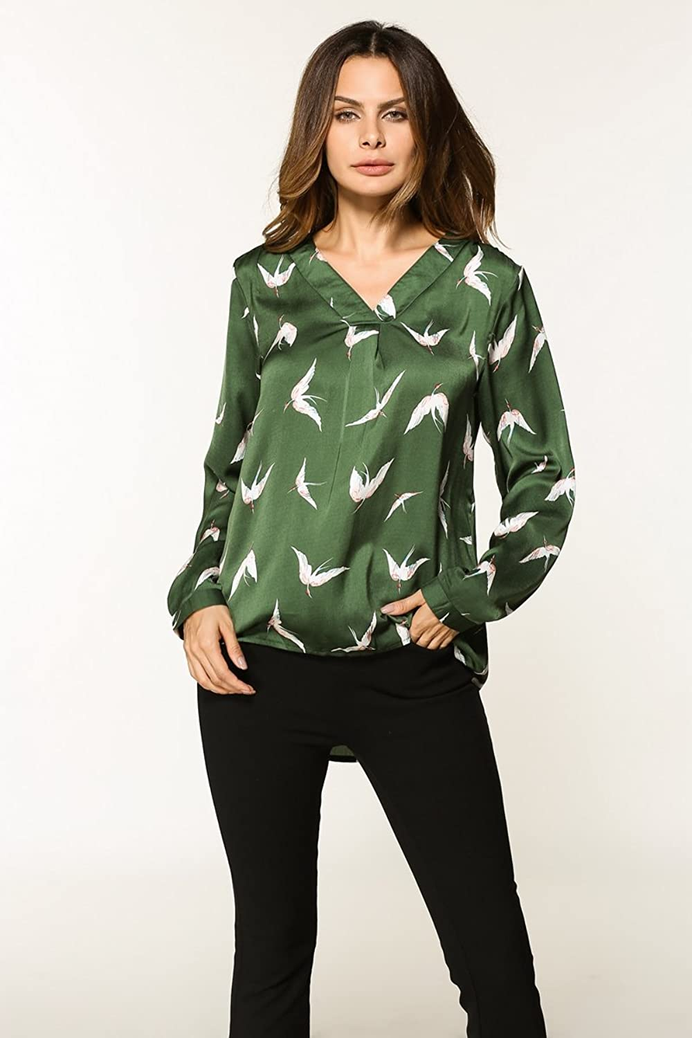 DHWMFemale Spring temperament blouse VNeck Long Sleeve Shirts Bird
