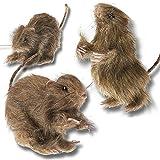 """Prextex mini ratti per una super decorazione di Halloween! Include: 3 Mini ratti pelosi realistici. 1 ratto seduto 2 sdraiati. Ogni ratto è lungo circa 6"""" con una coda flessibile che si estende per altri 6"""". Eccellente decorazione sia dall'interno ch..."""