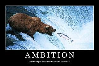 Ambition Bear Fish Funny Demotivational Cool Wall Decor Art Print Poster 24x36
