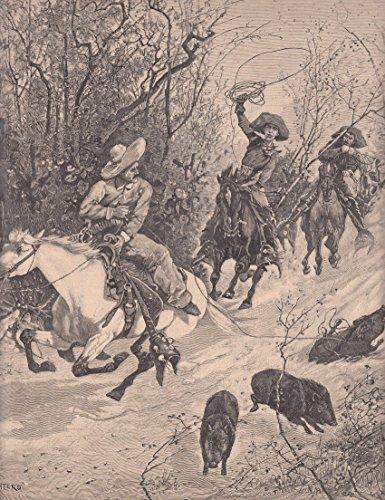 Jagd - Jagd auf Bisamschweine. Berittene Männer fangen die Schweine mit dem Lasso. [Grafik]