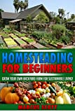 HOMESTEADING FOR BEGINNERS: Grow Your Own Backyard Farm for Sustainable Living! (Homesteading for Beginners, Mini Farming and Indoor Gardening) (English Edition)