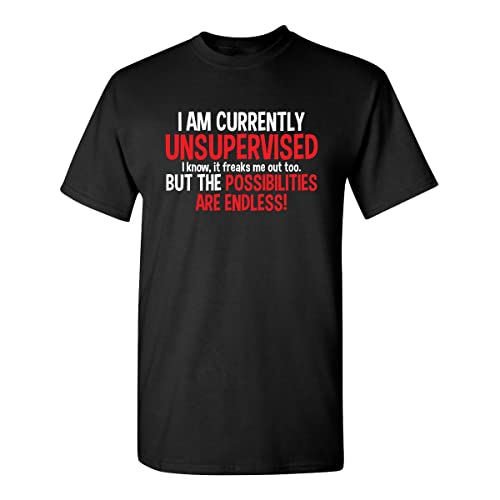 c722ce72a49d I Am Currently Unsupervised Adult Humor Novelty Graphic Sarcasm Funny T  Shirt