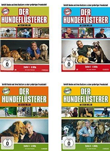 Staffel 1-4 (22 DVDs)