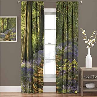 GUUVOR Woodland Wear-Resistant Color Curtain A Carpet of Bluebells Spreads Through Woodland in Staffordshire England Waterproof Fabric Curtain 52