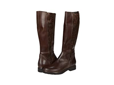 Sesto Meucci Giles (Tmoro Nappa/Brown Grelux Stretch) Women