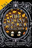 The You Say Which Way Collection: Dungeon of Doom, Secrets of the Singing Cave, Movie Mystery Madness: 1