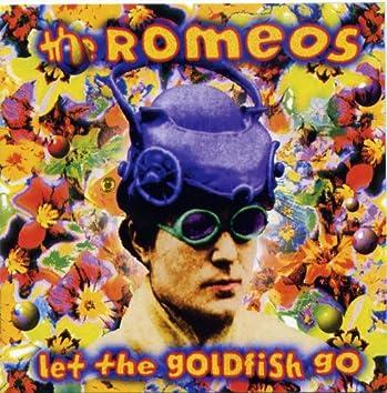 Let The Goldfish Go