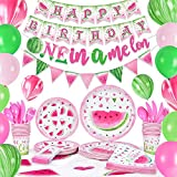 WERNNSAI Watermelon Birthday Party Supplies - One in a Melon Party Decorations for Girls 1st Birthday Banner Balloons Tablecloth Plates Cups Napkins Spoons Forks Cutlery Bag Utensils Serves 16 Guests 153PCS