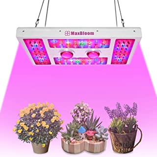 LED Grow Light Dimmable Led Grow Light COB 600W Full Spectrum for Indoor Plants Veg and Flower 12-Band UV&IR MaxBloom X6 Plus Led Grow Light (the 8th Generation)