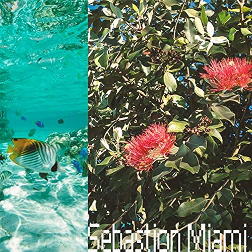 Sebastion Miami