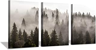 Hardy Gallery Foggy Forest Picture Wall Art: Landscape Painting Misty Pine Trees Artwork Print on Canvas for Kids Rooms(16